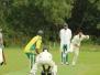 2016 - Cricket