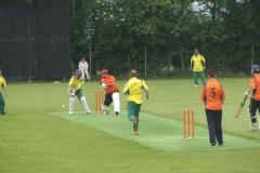 cricket 10