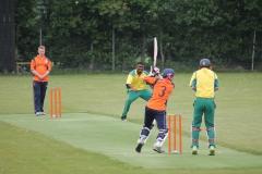 cricket 9