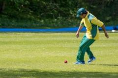 KIF Cricket mod Kerteminde 2016_-22