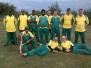 2015 - Cricket